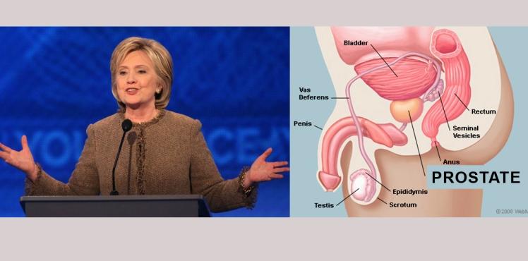 Hillary Prostate comp